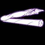 Pre-roll icon